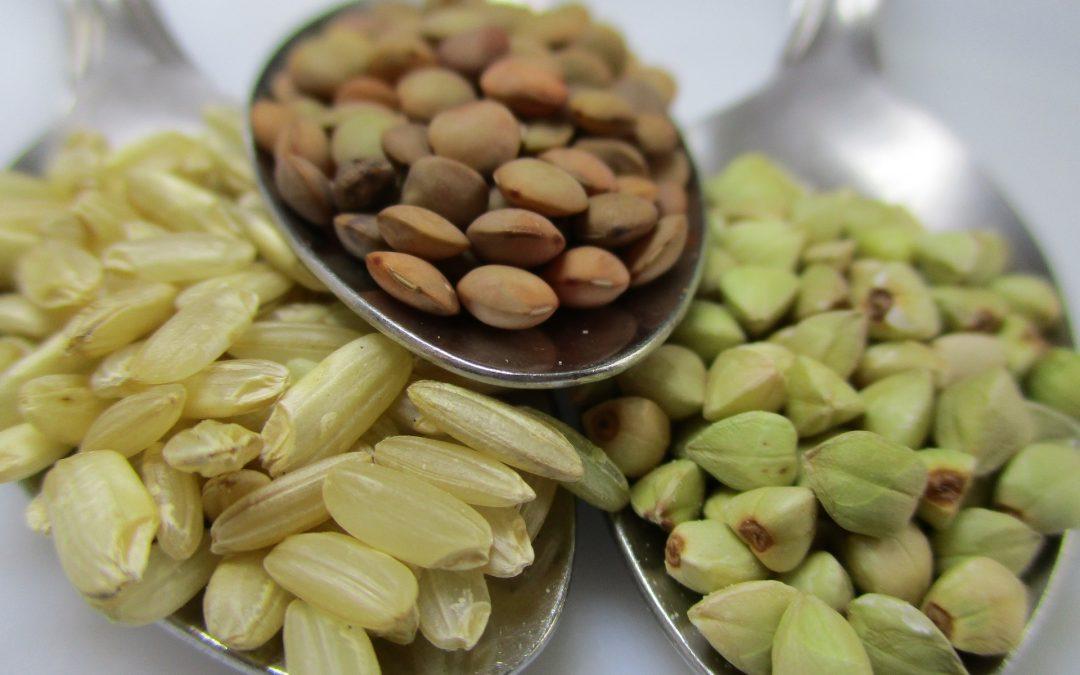 De hype van pseudogranen als gezond alternatief voor gluten