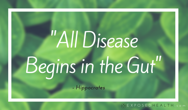 """All disease begin in the gut"" Hippocrates"